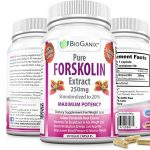 Premium Pure Forskolin Extract – Usage, How To Take The Correct Dosage, And Dangers