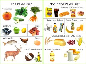 Paleo Diet Plan For Weight Loss: Recipes, Foods List