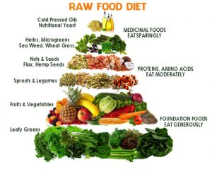 Raw food weight loss diet plan recipes benefits pros and cons the raw food diet is not a weight loss diet it is more of a healthy lifestyle that encourages people to eat healthy food choices that are in their natural forumfinder Image collections