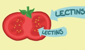 Lectin – Free Diet List: Plan, Recipes, and Reviews